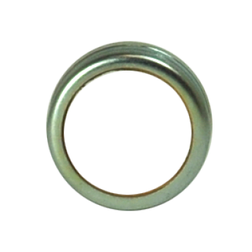 ALBION RING CAP WITH GASKET 421 G01