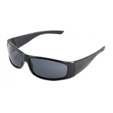 ERB BOASX Safety Glasses