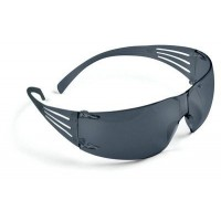3M SecureFit Safety Glasses SF202AS
